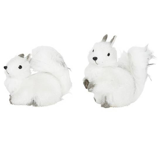 Squirrel White & Grey Fur