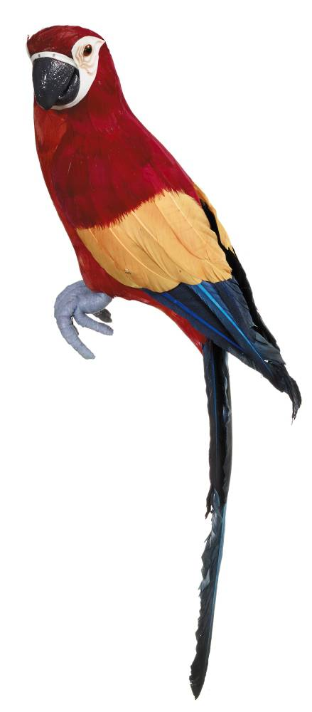 Macaw Red 44cm SOLD OUT