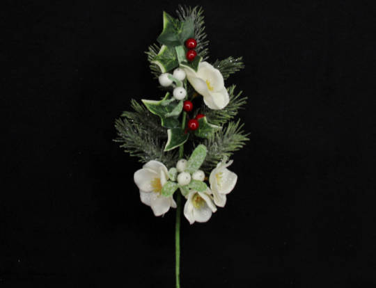 Christmas Rose, Fir & Berry Pick