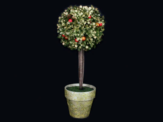 Single Ball Topiary with Berries in Gold Pot SOLD OUT