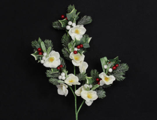 Frosted Fir and Christmas Rose Branch